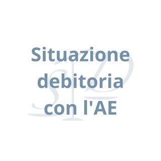 Agenzia delle Entrate  - situazione debitoria complessiva: come e perché richiederla?
