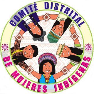 Formación en el derecho a la participación de mujeres indígenas en Bogotá