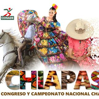 Entrevista Gustavo Dávalos Chiapas 2016