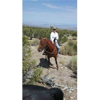 Heidi Villegas, Desert Homesteader~ Part 2