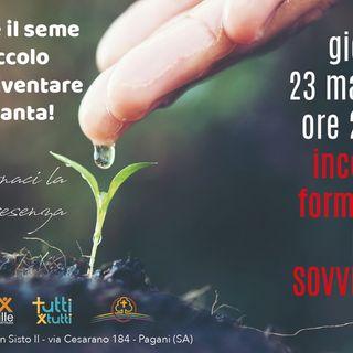 Anche il seme più piccolo può diventare una pianta!