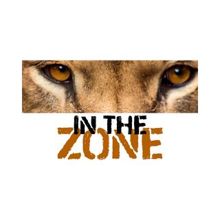 In the Zone - Skill