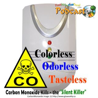 Carbon Monoxide... The Silent Killer - Ken Wilson