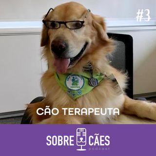 Cão terapeuta - Cachorros que ajudam pessoas - Sobre cães 03