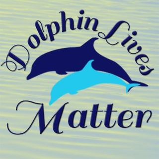 The Dolphin Lives Matter Podcast Episode 3 (Taiji 101 – Taiji Dolphin Drive Hunts & Why The Right Should Care)