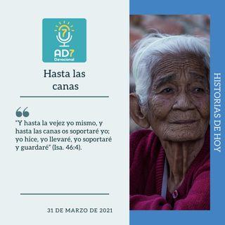 31 de marzo - Hasta las canas - Devocional de Jóvenes - Etiquetas Para Reflexionar