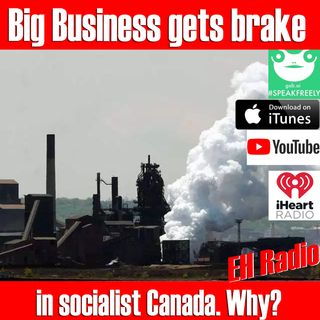 Morning moment Canadian Businesses getting a break on Carbon tax Aug 7 2018