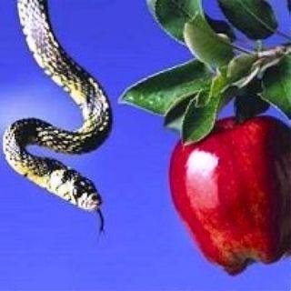 Qualè il problema più grave oggi? Il peccato mortale!