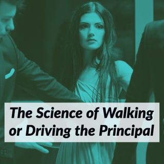 The Science of Walking or Driving the Principal