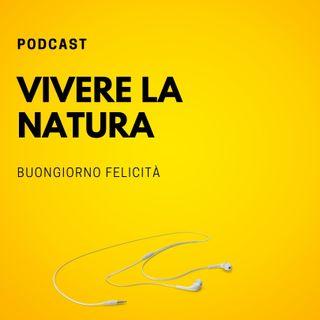 #714 - Vivere la natura  | Buongiorno Felicità