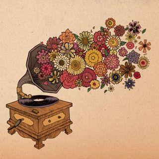 Il Manuale Musicale dei Sensi - Wolfbox Tre - Odorare