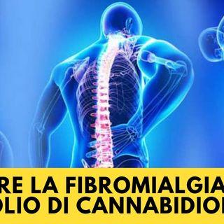 Curare la fibromialgia con l'olio di Cannabidiolo (CBD)
