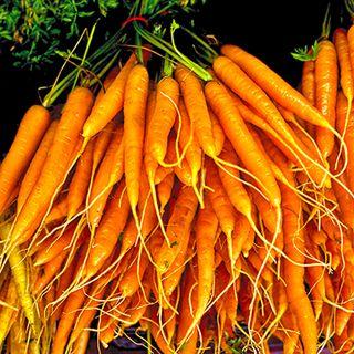 Les énigmatiques carottes