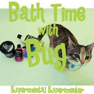 Experimental Experimenter