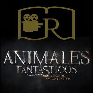 RAG 14: Animales fantásticos y dónde encontrarlos