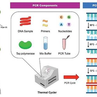 PCR for COVID= Scam for Cashflow