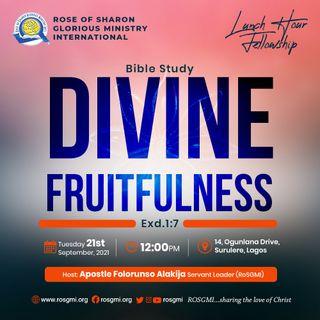 Bible Study: Divine Fruitfulness