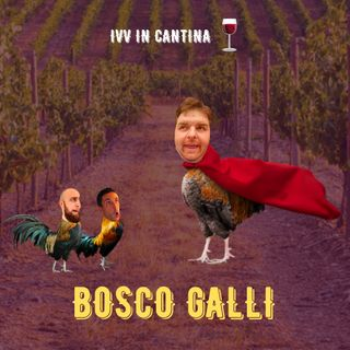 #28 - IVV in Cantina - Bosco Galli