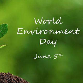 Endangered - In aumento i crimini ambientali