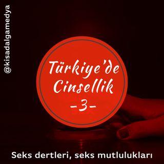 Türkiye'de cinsellik 3:  Seks dertleri, seks mutlulukları