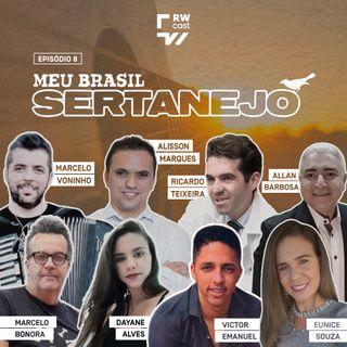 Meu Brasil Sertanejo: o trabalho dos artistas e o retorno dos fãs