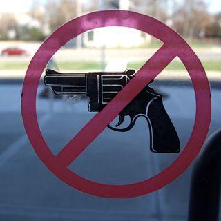 Semplice come possedere un'arma da fuoco - Intervista a Gabriella Neri