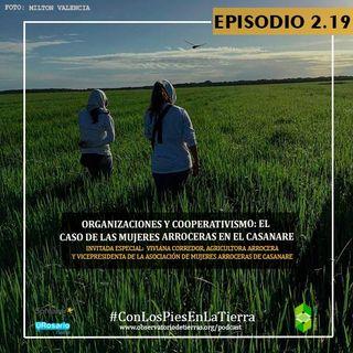 Organizaciones y cooperativismo: el caso de las mujeres arroceras en el Casanare