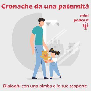 Cronache da una paternità