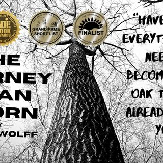 Corey Wolff discussing his book ( The journey of an Acorn ) Childrens and young adult book