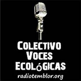 Descripción de 2020. Un año de represiones y arbitrariedades al pueblo panameño que denuncia la corrupción y desigualdad social