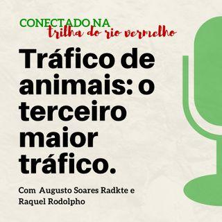Tráfico de animais: o terceiro maior tráfico.