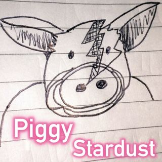 The Basil Bottler Radio Show - Piggy Stardust
