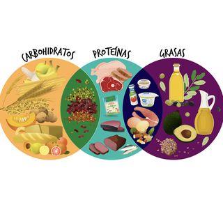 Capítulo 1. Clasificación de nutrimentos