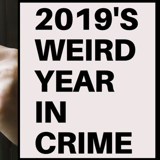 2019'S WEIRD YEAR IN CRIME