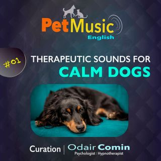 #01 Therapeutic Sounds for Calm Dogs | PetMusic
