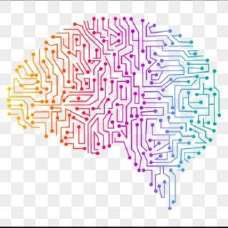 La Neuroeducación