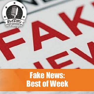 Fake News: Best of the Week