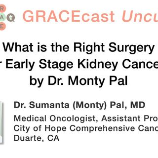 What is the Right Surgery for Early Stage Kidney Cancer?, by Dr. Monty Pal