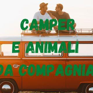 CAMPER E ANIMALI DA COMPAGNIA