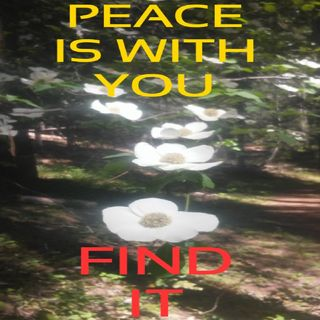 Peace Is With You