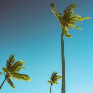 ÉPISODE 51 / Créer du contenu en vacances