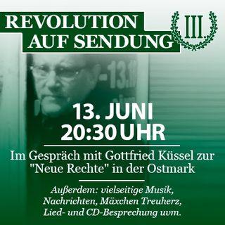 Revolution auf Sendung #020 - 13. Juni - Im Gespräch mit Gottfried Küssel