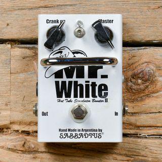 Zionet - Il monografico di Mr White