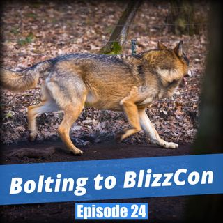 FC 024: Bolting to BlizzCon