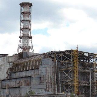 Fauna en Chernobil, con German Orizaola | Actualidad y Empleo Ambiental #51
