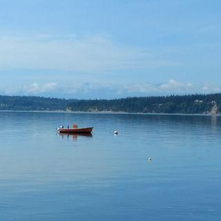 Big Blend Radio: Hilarie Larson explores Camano Island, Washington