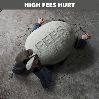 Fees Can Kill (Returns)