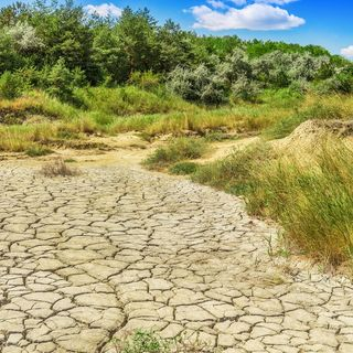 Drought: Corps Readying Plan For Low Lake Level