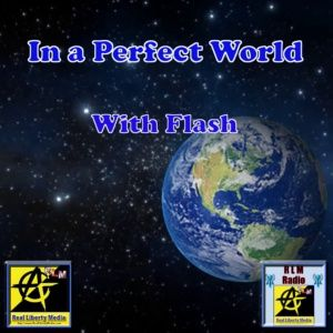 In A Perfect World Podcast - 2019-05-07 - Cowboys and Idiots? w Flash & VinE