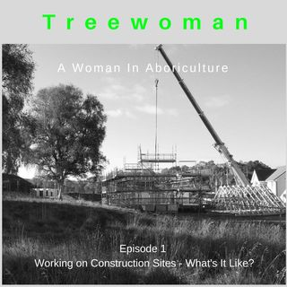 A Woman in Arboriculture
